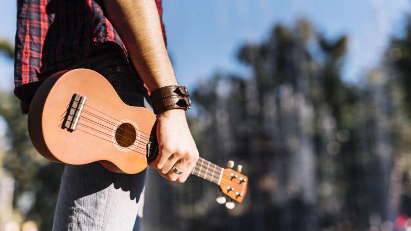 Dalyan ilk sokak müzisyenine kavuştu