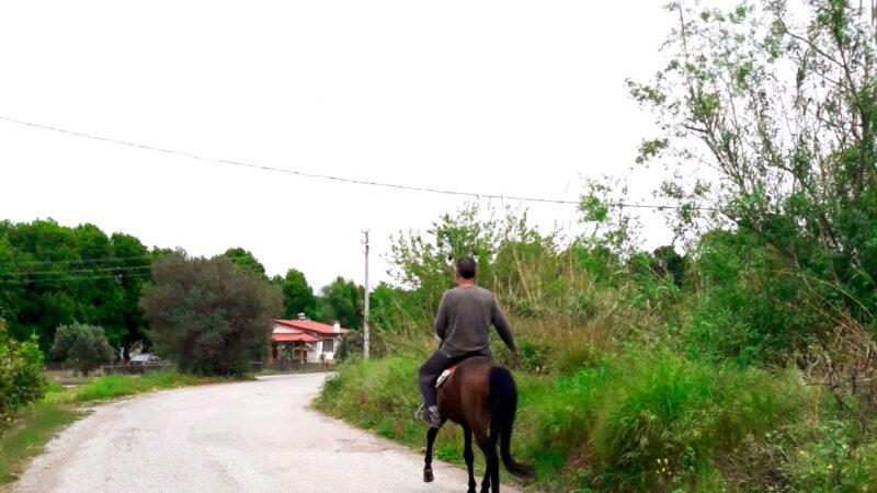 Dalyan sokaklarında atlı bir birey görüldü