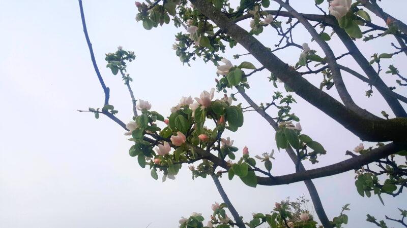 Kapalı havayla geçen Nisan ayı vatandaşı harekete geçirdi
